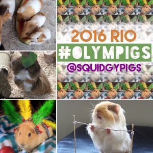 2016 Olympigs
