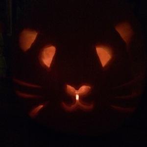 Squidgypigs - Guinea Pig Pumpkin