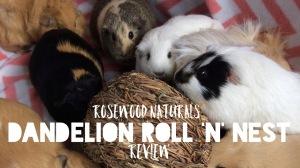 Squidgypigs - Dandelion Roll 'n' Nest