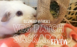 Squidgypigs - Veg Patch Sackaroo Review
