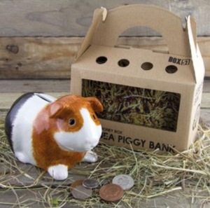 Squidgypigs - Guinea Piggy Bank Review - Pic from. Paladone