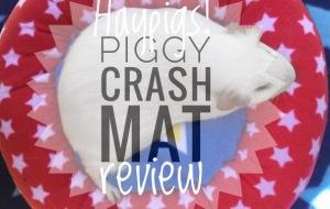 Piggy Crash Mat