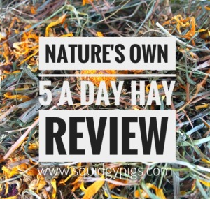 Nature's Own Timothy Rich 5 A Day Hay Review