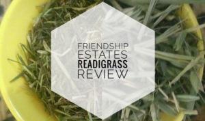 Friendship Estates Readigrass