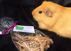 For Haymazing Pets Dandelion Root Review