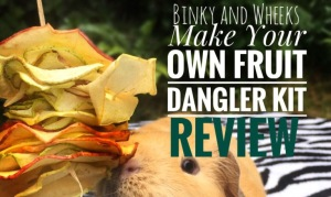 Binky and Wheeks Fruit Dangler Kit