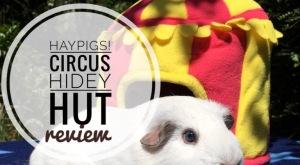 Haypigs Circus Hidey Hut