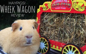 Haypigs Wheek Wagon