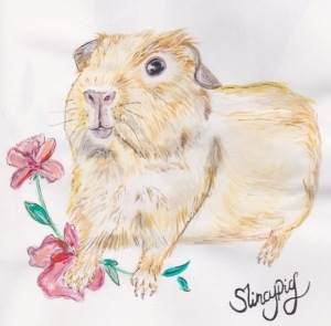 Slincypig by Blossom and Ivy.