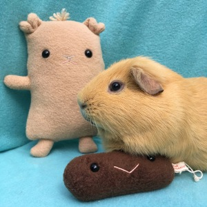 Slincypig, Flat Slincypig and poo!