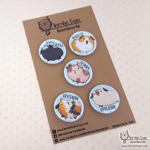 Birdie Tam Guinea Pig Badges