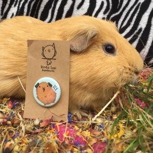 Birdie Tam Guinea Pig Magnet