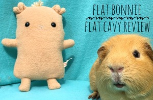 Flat Cavy Review