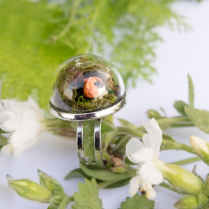 Guinea Pig Dome Ring from Maxi Charming Pet