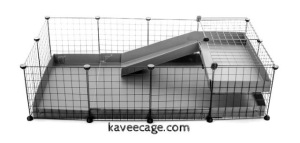 Kavee Cage