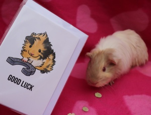 Popcorning Piggy Review