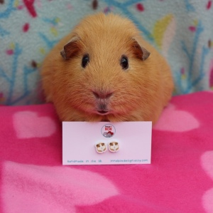 Innabox Guinea Pig earring review