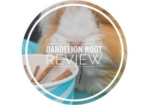 Dandelion root