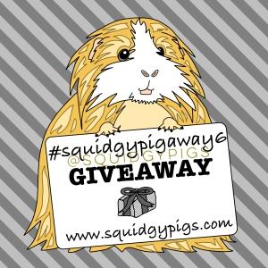 #squidgypigaway6